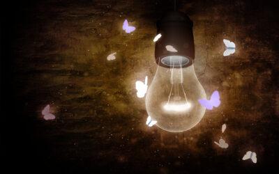 reflexión 2: como polillas alrededor de una luz